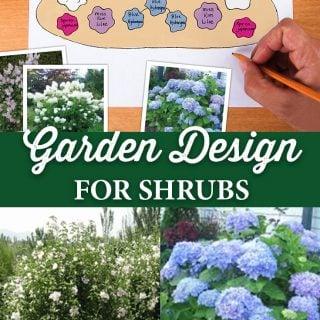 Garden Design for Shrubs - Crocker Nurseries