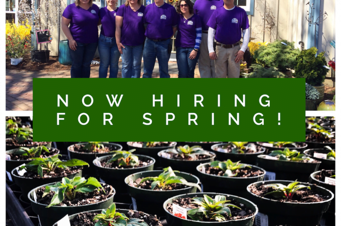 Now Hiring for Spring