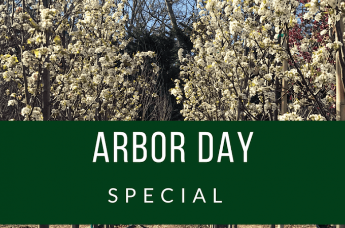 Arbor Day Special