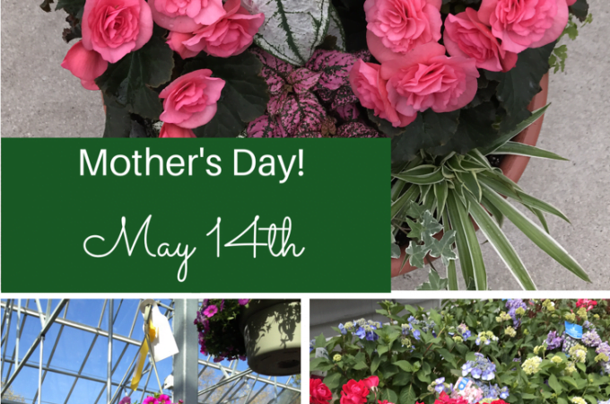 Mother's Day Gifts!
