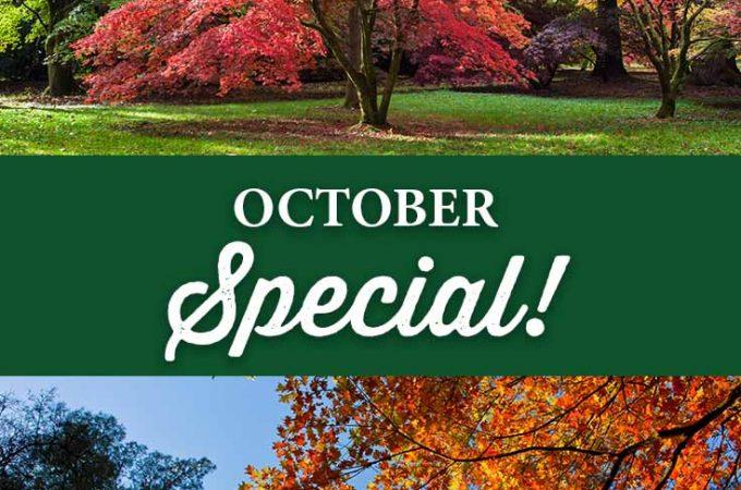 October Special!