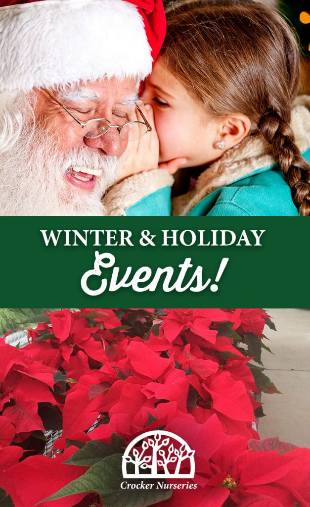 crocker-nurseries-holidays-2016-events
