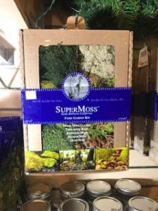 Moss assortment Kit
