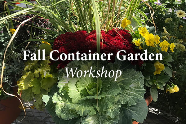 Crocker Featured Image Fall Garden